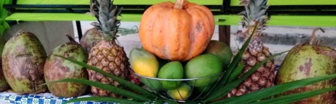 Catalogo de Produtos Agrícolas da Feirinha da Agricultura Familiar de Monte Azul